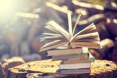 Bücher auf natürlichem Hintergrund Stockfotografie