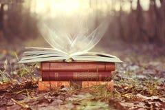 Bücher auf sonnigem Hintergrund der Natur Sonniger Tag Mystischer Tag Mystische Bücher stockfotografie