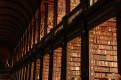 Bücher, Bücher und mehr Bücher Lizenzfreie Stockfotos