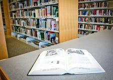 Bücher an der Bibliothek Lizenzfreies Stockfoto