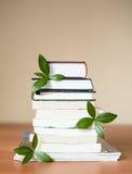 Bücher für Wissen und das Gehirn mit Blättern Stockbild