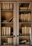 Bücher im Regal lizenzfreies stockfoto