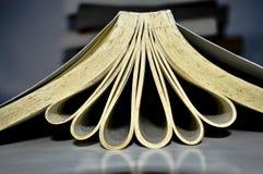 Bücher mit Liebe und Blumen stockfoto