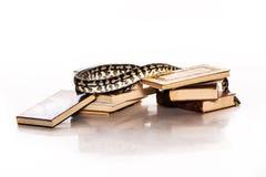 Bücher und eine Schlange auf einem weißen Hintergrund Lizenzfreies Stockbild