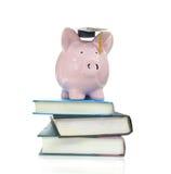 Bücher und piggy Stockbild