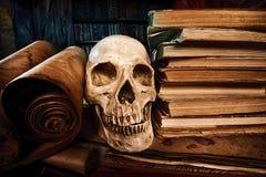 Bücher und Schädel Stockbilder