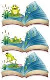Bücher von den Fröschen, die im Teich leben lizenzfreie abbildung