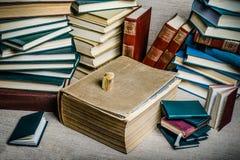 Bücher von meiner Bibliothek lizenzfreie stockfotografie