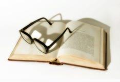 Bücherwurm Lizenzfreies Stockbild