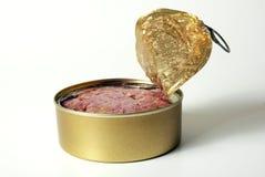 In Büchsen konservierte Nahrung Lizenzfreie Stockbilder