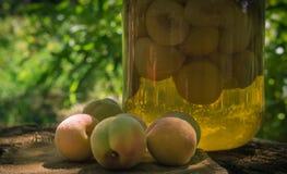 In Büchsen konservierte Pfirsiche in einem Glas stockfotos