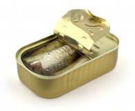 In Büchsen konservierte Sardinen Stockfotografie