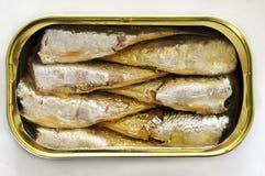 In Büchsen konservierte Sardinen stockfotos
