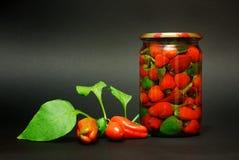 In Büchsen konservierter roter Pfeffer Lizenzfreies Stockbild