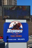 Büffel-Bison-Baseball-Zeichen, NY, USA Lizenzfreies Stockfoto