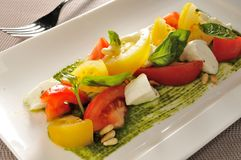 Büffel-Mozzarella-Basilikumsalat Stockfoto