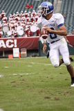 Büffel-Quarterback Zach Maynard Lizenzfreie Stockfotografie