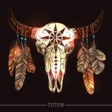 Büffel-Schädel mit Feder-Amerikaner-Totem Stockfotos