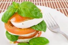 Büffelmozzarella und -tomaten Lizenzfreies Stockbild