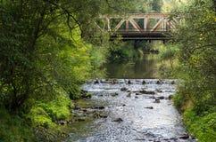 Bügeln Sie Brücke Stockfotos