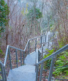 Bügeln Sie Treppenhaus in einem bewaldeten Teil des Berges Lizenzfreies Stockfoto