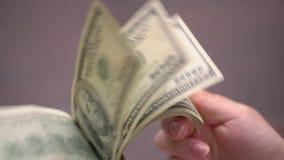Bündel Amerikaner USD-Geld ist auf Tabelle stock footage