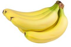 Bündel Bananen Stockfoto