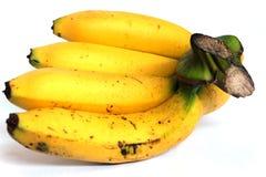 Bündel Bananen getrennt auf weißem Hintergrund stockfotografie