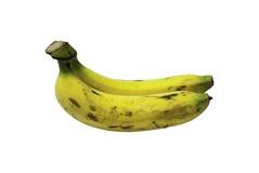 Bündel Bananen getrennt auf weißem Hintergrund Stockbild