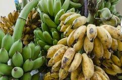 Bündel Bananen in Thailand lizenzfreies stockfoto