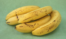 Bündel Bananen von der Rückseite. Stockfoto