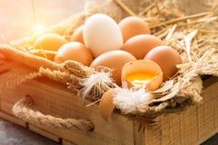 Bündel braune Eier in der hölzernen Kiste Junges Küken in Wanne, 2 malte Eier und Blumen Stockfoto