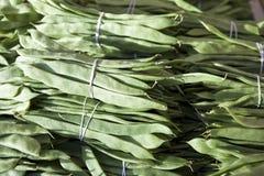 Bündel der frischen grünen Bohnen Grüne Bohnen, hängende Gartenbohne, Phaseolus- vulgarishülsen allein Gruppen-Bohnen Lizenzfreies Stockbild
