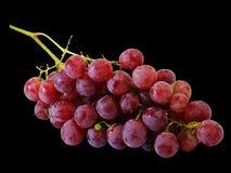 Bündel der frischen roten Trauben Stockfoto