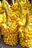 Bündel der gelben Bananen Lizenzfreies Stockbild
