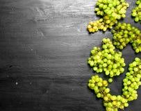 Bündel der grünen Trauben Lizenzfreie Stockfotos