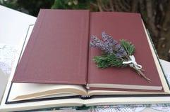 Bündel der Lavendelblume und eine Niederlassung der Zypresse auf dem Bucheinband des offenen Buches stockfoto
