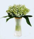Bündel der Lilie der Täler Lizenzfreies Stockbild