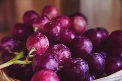 Bündel der purpurroten und roten Trauben in einem Weidenkorb auf einem dunklen Hintergrund Die Ernte von ungewaschenen Trauben in Lizenzfreies Stockfoto