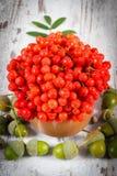 Bündel der roten Eberesche mit Blättern und Eicheln auf rustikalem hölzernem Hintergrund Stockfotos