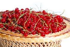 Bündel der roten Johannisbeeren in einem Korb Lizenzfreie Stockfotos