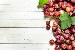 Bündel der roten Trauben mit Blättern Stockfotos