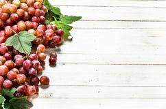 Bündel der roten Trauben mit Blättern Lizenzfreie Stockbilder