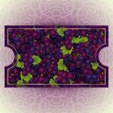 Bündel der roten Trauben mit Tautropfen Lizenzfreie Stockbilder