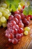 Bündel der roten und grünen Trauben Stockfoto