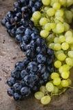 Bündel der roten und weißen Trauben Stockbild