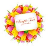 Bündel der Tulpe mit Marke Lizenzfreies Stockfoto