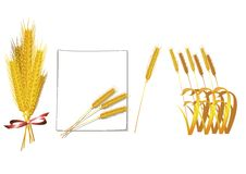 Bündel des Weizenvektors lizenzfreie abbildung