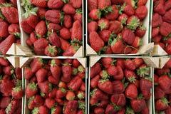 Bündel Erdbeeren Stockbild