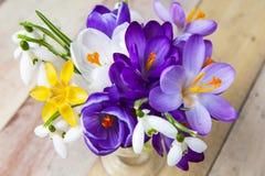 Bündel Frühlingsblumen Krokus und Schneeglöckchen auf der hölzernen Rückseite Stockfotografie